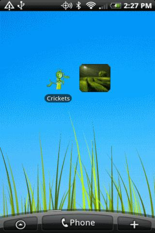 Crickets Full- screenshot