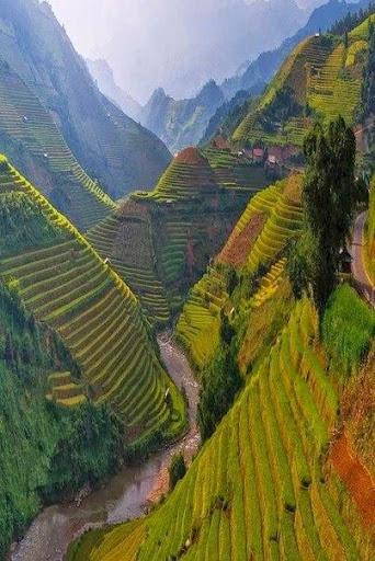 Beautiful World wallpaper