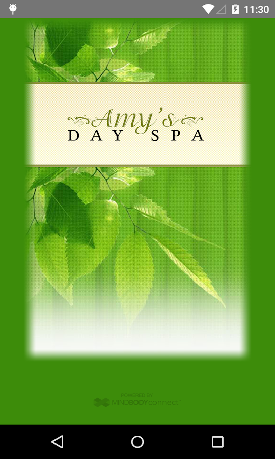 Amy's Day Spa- screenshot