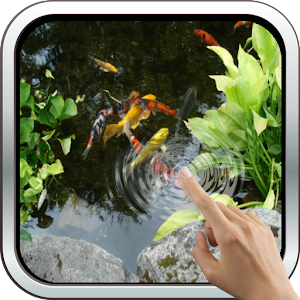 Magic touch realistic koi live wallpaper android apps for Carpe koi aquarium 300 litres