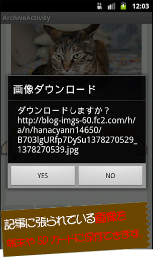 【免費新聞App】猫速‐猫の毎日新聞まとめブログRSSantena-APP點子