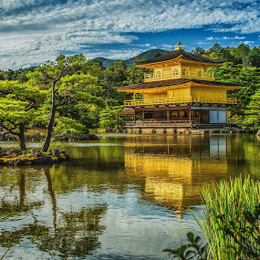 The Golden Pavilion by Nicola Scarselli - Buildings & Architecture Public & Historical ( japan, architecture, golden, travel photography, nikko )