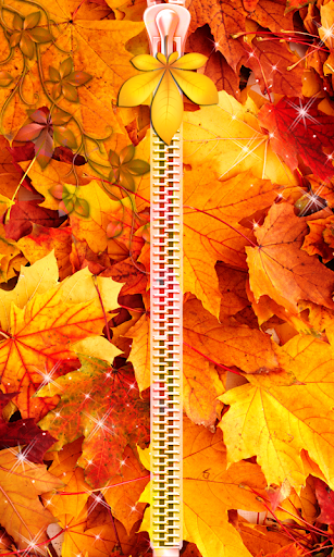 Autumn Zipper Lock Screen