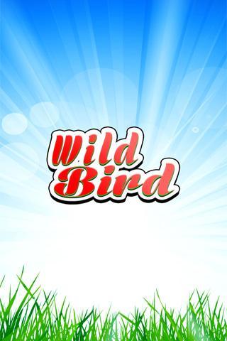 Jungle Bird Matching for Kids