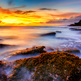 Eternal by Hendri Suhandi - Landscapes Waterscapes ( temple, bali, sunset, beach, travel, tanah lot, stones, rocks )