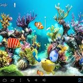 Aquarium Kitkat LiveWallpaper
