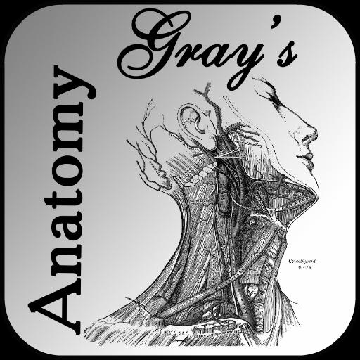 Gray's Anatomy 2012 LOGO-APP點子