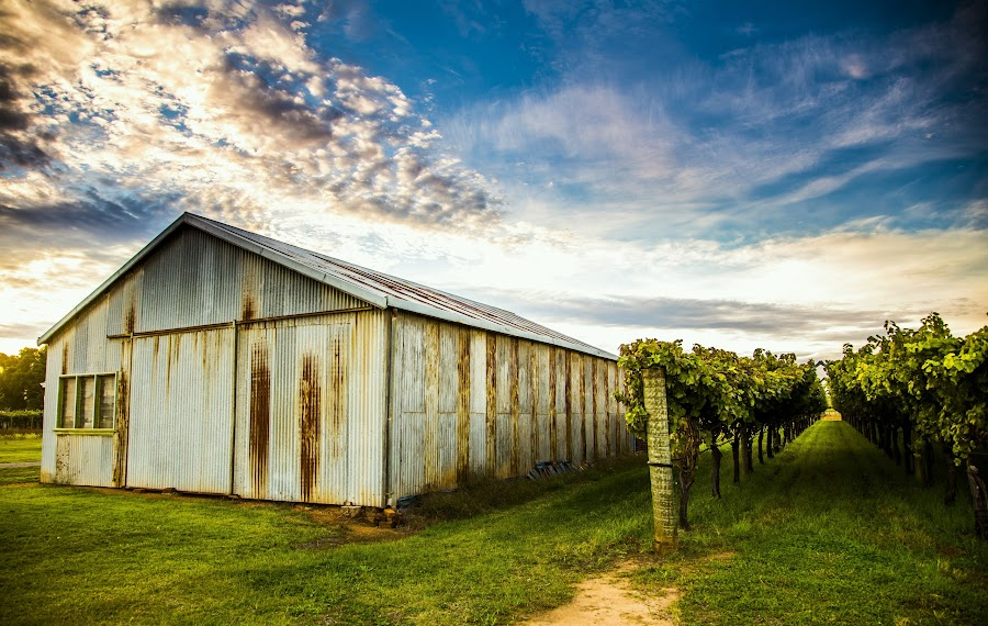 ol winery by Jacqui Hunt - Buildings & Architecture Other Exteriors ( , HDR, Landscapes )