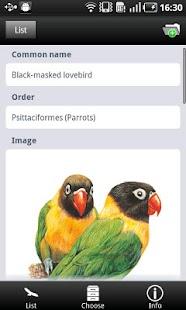 The World of Birds- screenshot thumbnail