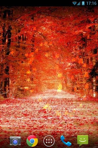 秋天枫叶动态壁纸