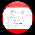ST DIARY icon