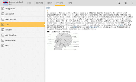 Oxford Medical Dictionary TR 4.3.136 screenshot 75379