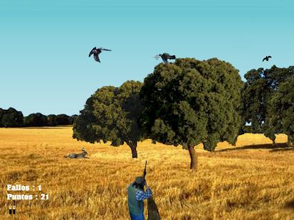 Simulador caza