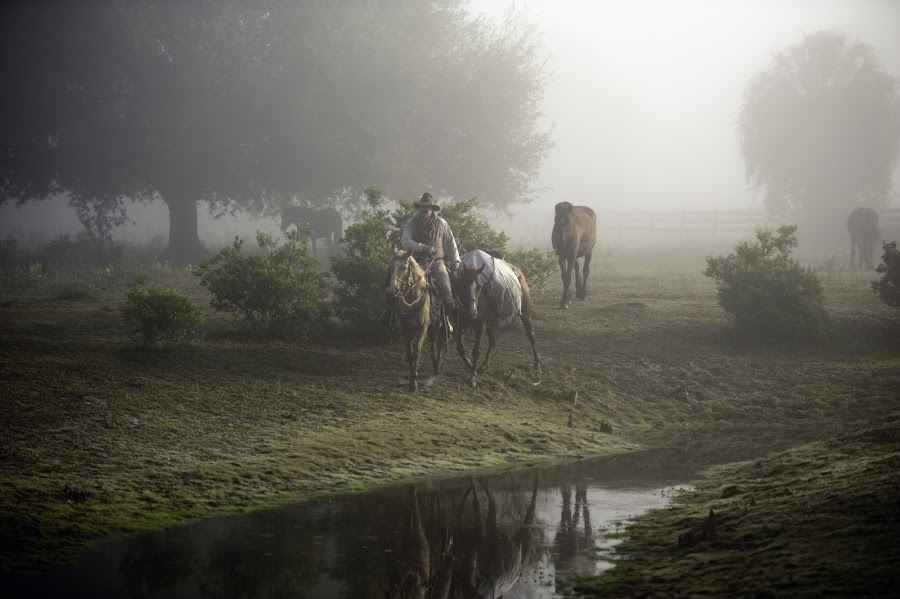 In The Mist by Linda Constant - Digital Art Places ( dry creek, fog scene, cowboy, horses, les mcdowell, western, digital photography )