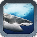 Great White SHARKS icon