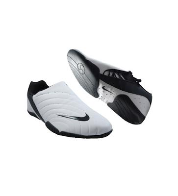 Acheter Chaussure TKD NIKE à Saint Jean De Védas chez Leader