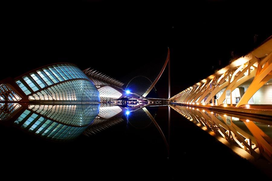 Valencia, Spain by Iva Aviana - City,  Street & Park  Night ( reflection, city of arts and sciences, night, symmetry, valencia, spain, , city at night, street at night, park at night, nightlife, night life, nighttime in the city )