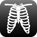 Free Download Anatomy Atlas Free APK for Samsung
