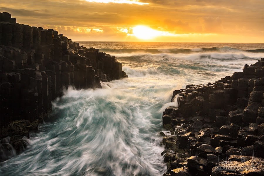 Gargle by Isaac Purcell - Landscapes Waterscapes ( waves, australia, sunrise, beach, surf, rocks )