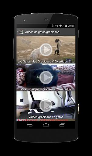 免費媒體與影片App 搞笑的猫 阿達玩APP