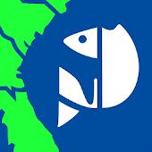 SA Fishing Regulations