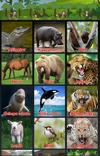 เสียงสัตว์ Animal Sounds