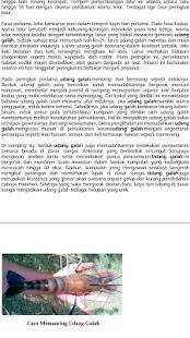Memancing - TIPS & TEKNIK (PRO) - náhled