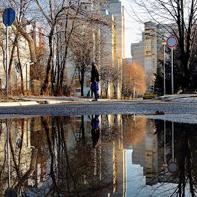 Walker  2 by Zoran Nikolic - City,  Street & Park  Street Scenes ( street, walker, reflexion )