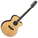 12 STRING GUITAR TUNER icon