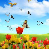 Flying Birds 3D Live Wallpaper
