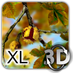 Autumn Leaves in HD Gyro 3D XL v1.0