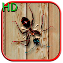 Smasher HD icon