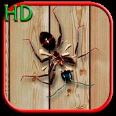 Smasher HD