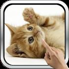 Playful ginger kitten icon