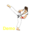 Final Karate Demo icon