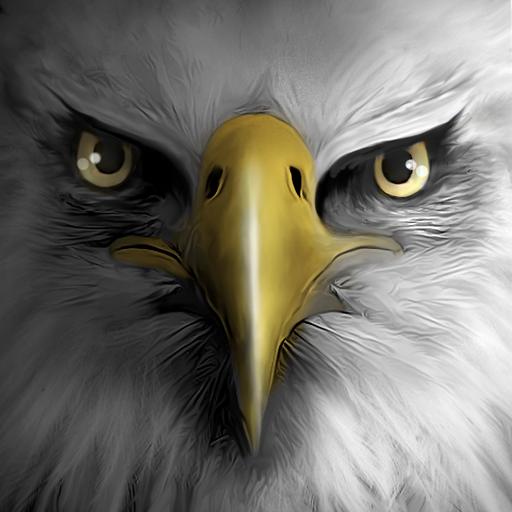 Eagle Play 模擬 App LOGO-APP試玩