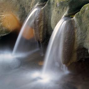 by Wibi Prayogo - Nature Up Close Water