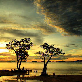 manggroves at nirwana  by Fajar Vandra - Landscapes Sunsets & Sunrises