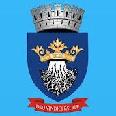 Brasov City Council