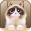 Shui The Kitten Lite icon