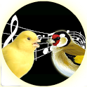 Singing Canary Goldfinch Train icon