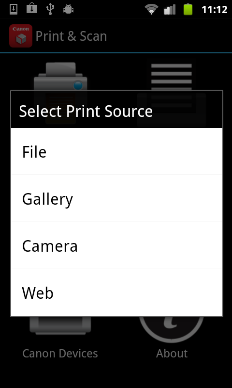 Direct Print & Scan for Mobile - screenshot