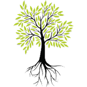 Botany Plants Reference