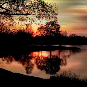 Sun Down by Dawn Marie - Landscapes Sunsets & Sunrises ( water, reflection, season, park, sunset, silhouette, trees, summer, leaves, sun, branches, Hope )