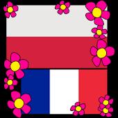 Polish-French Dictionary