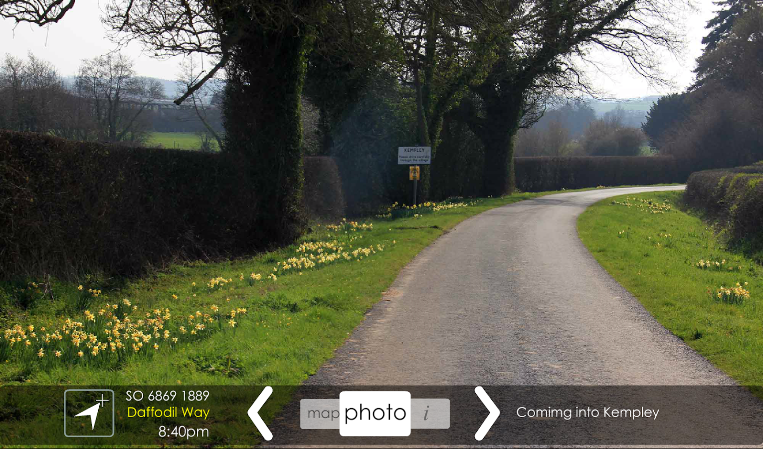 Daffodil Way- screenshot