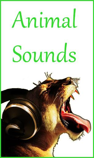 动物的叫声