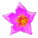 Floating Flowers LWP icon