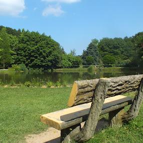A Lake with Bench by Halime Pelitçi - City,  Street & Park  City Parks ( nature, bench, lake, landscape, wooden bench )