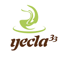 Yecla33 Online icon